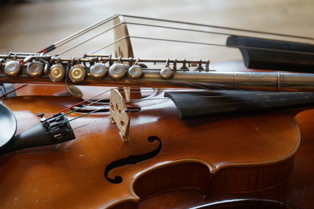 ASSOCIAZIONE ISTITUTO DI MUSICA DELLA PEDEMONTANA